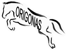 Sporto klubas Origonas