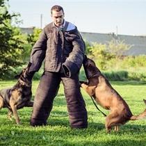 Ekstremalus sulaikymas su šunimi
