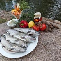 """Upėtakių žvejyba ir vakarienė """"TonyResort"""""""