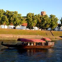 Plaukimas gondola Neries upe