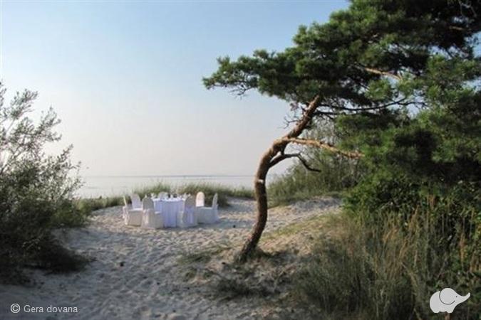 """Vakarienė ant jūros kranto  restorane """"Gintarinė Pilis"""""""