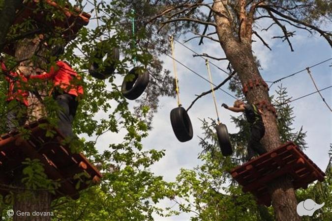 """3 val. pramogos nuotykių parke """"Tarzanija"""""""