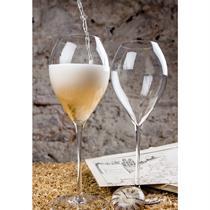 Klasikinių vynuogių šampanų degustacija