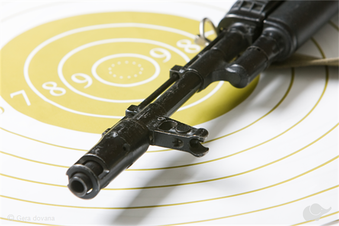 Šaudymas iš kovinių ginklų