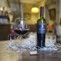 Vyno degustacija Vilniaus rūsiuose