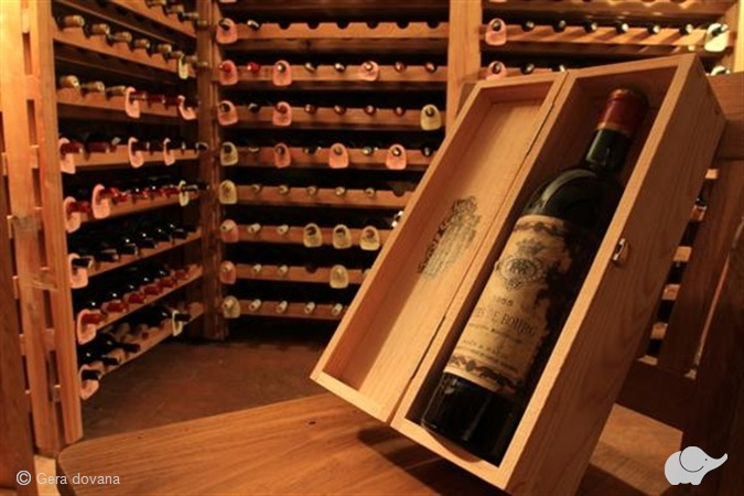 Vyno degustacija autentiškame dvare