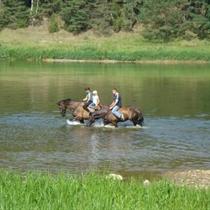 Jodinėjimas žirgais po Dzūkijos apylinkes